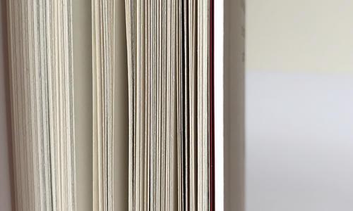 """(2019.12.16) Ronzani Editore: uno speciale """"Pinocchio"""" con i ritratti di Mario Francesconi apre """"Alfabeto"""", una collana tutta nuova"""