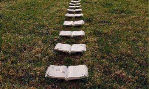 Libri in cammino